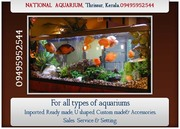 Aquarium in Thrissur,  Kerala-Imported or Custom made-NATIONAL AQUARIUM